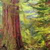 morning woods 4