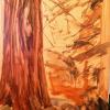 Morning Woods 1
